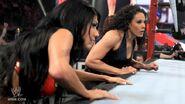 Survivor Series 2011 12