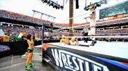WrestleMania 28.21