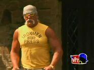 Hogans Go Hollywood.00002