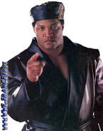 Ron Simmons (15)