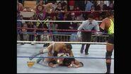 Survivor Series 1993.00001