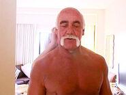 Hogans in Disguise 6