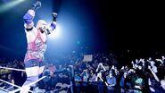WrestleMania Revenge Tour 2015 - Toulouse.2