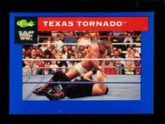1991 WWF Classic Superstars Cards Texas Tornado 37