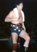 Terry Funk 20