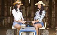 Bella Twins.40