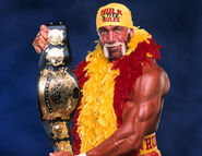 Hollywood-Hulk-Hogan-02