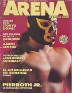 Arena de Lucha Libre 2