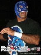 Blue Panther 12