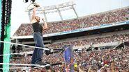 WrestleMania 33.27