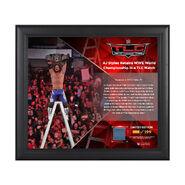 AJ Styles TLC 2016 15 x 17 Framed Plaque w Ring Canvas