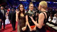 WWE HOF Red Carpet.9