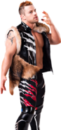 Davey Richards13