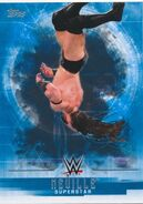 2017 WWE Undisputed Wrestling Cards (Topps) Neville 26