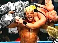 WCW Sin.00037