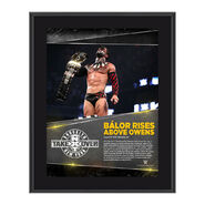 Finn Bálor NXT TakeOver Brooklyn 10.5 x 13 Photo Collage Plaque
