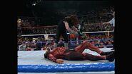 SummerSlam 1993.00048