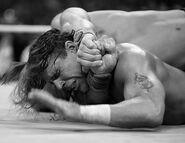 WrestleMania 23.68