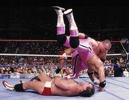 SummerSlam 1989-2