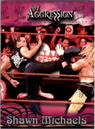 2003 WWE Aggression Shawn Michaels 31