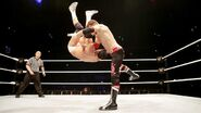 WWE WrestleMania Revenge Tour 2014 - Rome.6