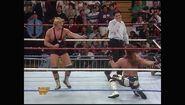 Survivor Series 1993.00011