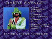 WWF Royal Rumble (JUE) -!-015