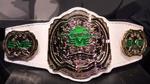 Pro Wrestling EVE Championship