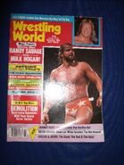 WrestlingWorldNov98