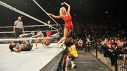 WWE WrestleMania Revenge Tour 2014 - Leeds.9