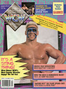 WCW Magazine - July 1994