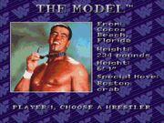 WWF Royal Rumble (JUE) -!-02sss6