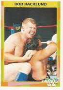 1995 WWF Wrestling Trading Cards (Merlin) Bob Backlund 67