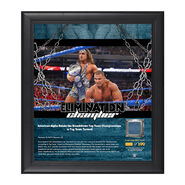 American Alpha Elimination Chamber 2017 15 x 17 Framed Plaque w Ring Canvas