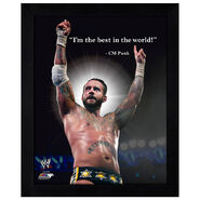 CM Punk ProQuote Photo