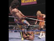 Royal Rumble 1990.2