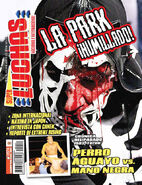 Super Luchas 471