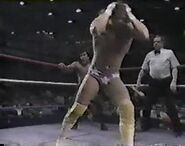 WWF The Wrestling Classic.00019