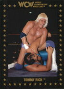1991 WCW Collectible Trading Cards (Championship Marketing) Tommy Rich 29