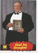 2012 WWE Heritage Trading Cards Chief Jay Strongbow 68