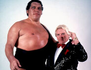 Andre the Giant12