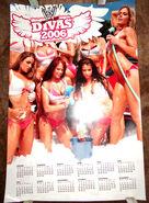 WWE Divas 2006 Wall Calendar