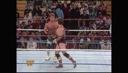 Survivor Series 1993.00009