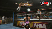 WWE 2K14 Screenshot.46