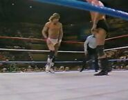 1.9.88 WWF Superstars.00011