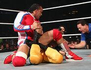 WrestleMania 23.19