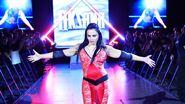 WrestleMania Revenge Tour 2013 - Mannheim.6