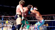 Royal Rumble 1990.12