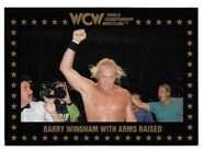 1991 WCW Collectible Trading Cards (Championship Marketing) Barry Windham With Arms Raised 28