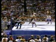 Wrestlefest 1988.00043